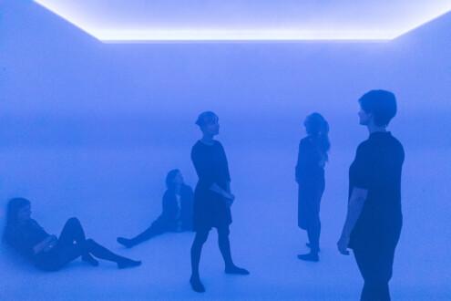 The Beauty Show - MAK Exhibition View, 2018. <i>Sensory Room</i>, 2018.
