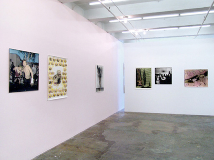 Elaine Stocki – The Palms - Installation view, west and north wall.