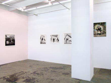 Elaine Stocki – The Palms - Installation view, east and south wall.