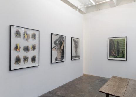 Hoar Frost – Elaine Stocki - Installation view: viewing area