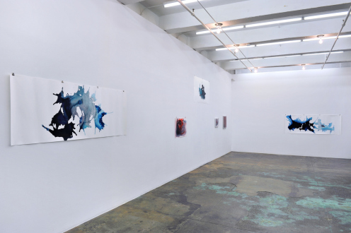 Aditi Singh – So much the less complete - Installation view: west and north walls