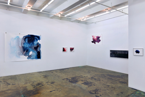 Aditi Singh – So much the less complete - Installation view: east and south walls