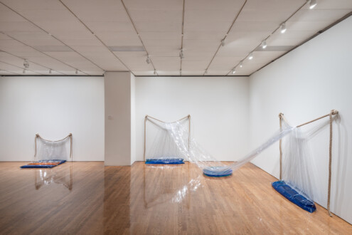 Water Compositions - Installation view, Philadelphia Museum of Art, 2021.