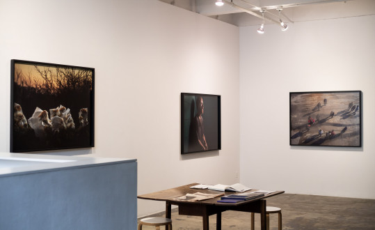 For The Sake of Calmness - Installation view, East and South walls. Photograph by Kwesi Floyd.