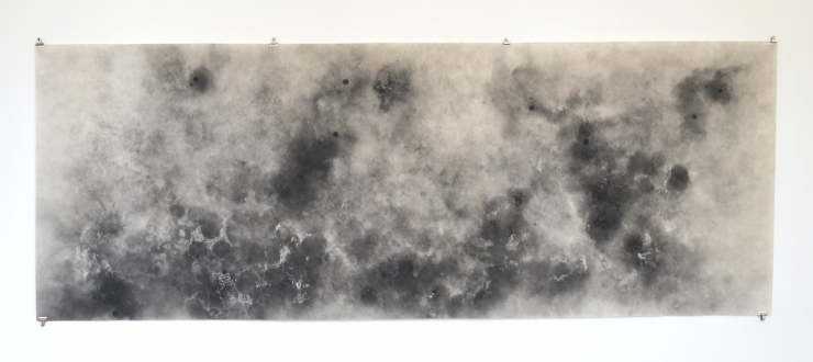 Aiditi Singh – All that is left behind - Aditi Singh, Untitled, 2013-15, Graphite on parchment paper, 36 x 88 in.