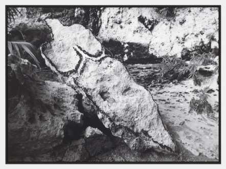 ecofeminism(s) curated by Monika Fabijanska - Ana Mendieta, Bacayu (Esculturas Rupestres) [Light of Day (Rupestrian Sculptures)], 1981/2019. Black and white photograph, 40 x 55 in (101.6 x 139.7 cm). Edition 2 of 3 with 2 AP  © The Estate of Ana Mendieta Collection, LLC. Courtesy Galerie Lelong & Co.