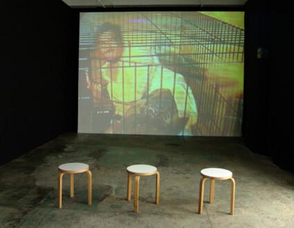 Thomas Erben Gallery – 25 years - Installation view from <i>Nicola Durvasula, Chitra Ganesh, Tejal Shah</i> (2006)