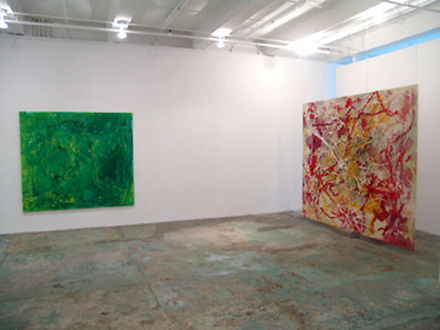 Dona Nelson – Brain Stain - Brain Stain - installation view, west and north wall.