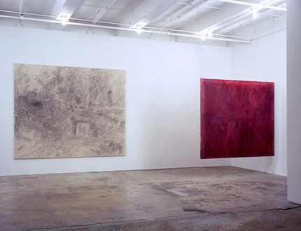 Brain Stain - <i>Brain Stain</i> - installation view, east and south wall.