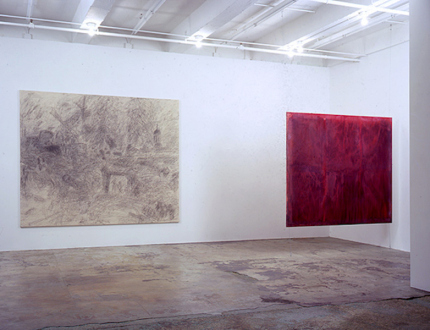 Dona Nelson – Brain Stain - Brain Stain - installation view, east and south wall.
