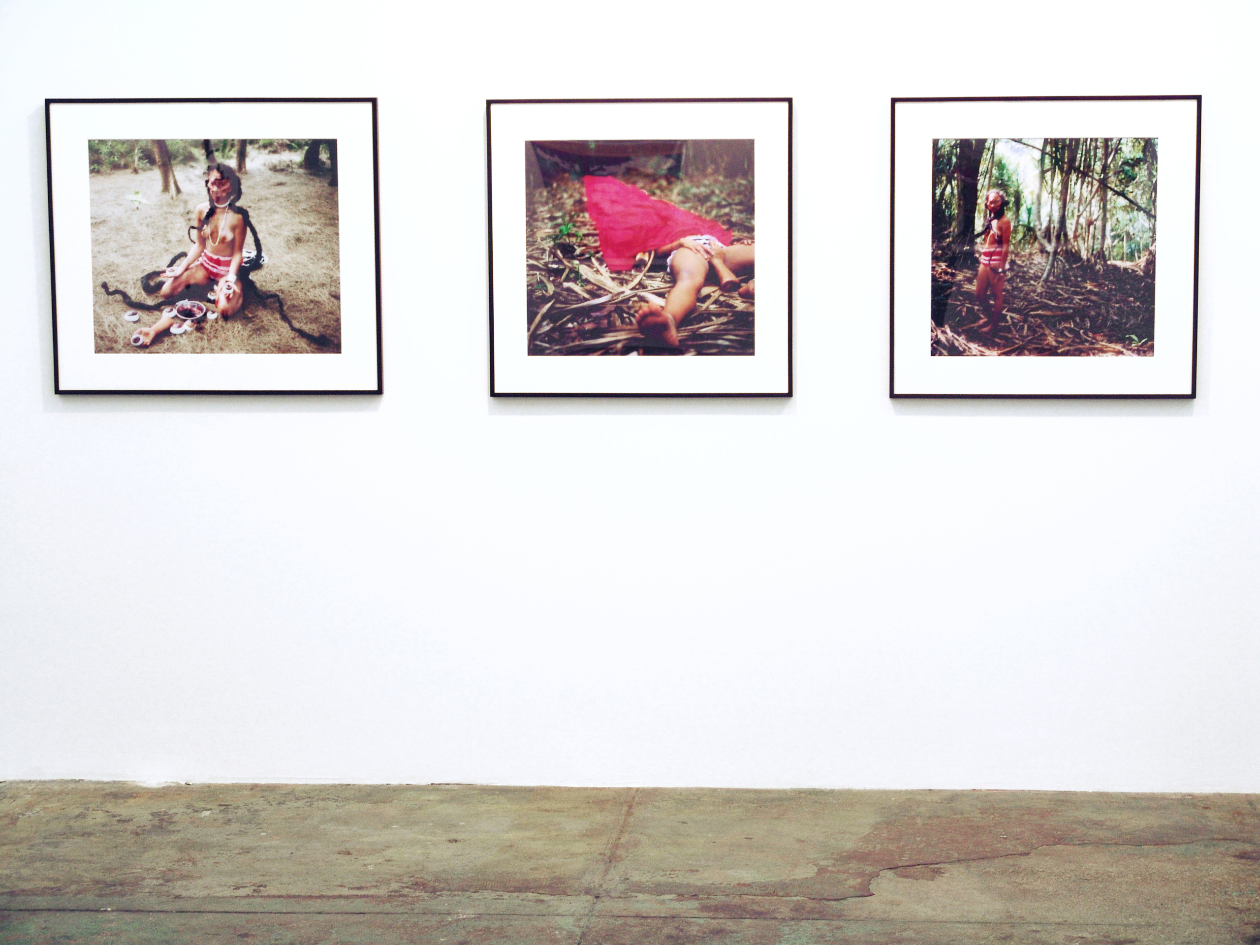 Chitra Ganesh – Upon Her Precipice - <i>Hidden</i> (photographic triptych), 2007. Installation view.