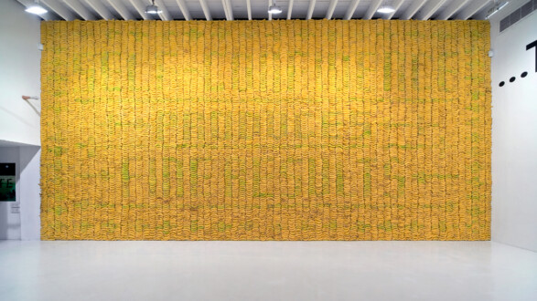 Things I Have Learned In My Life So Far, Deitch Projects - Installation view, <I>Banana wall</i> (II).