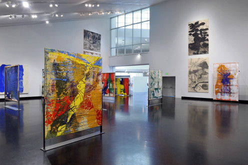 Dona Nelson - Installation view, Tang Teaching Museum