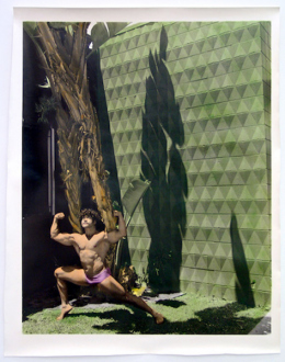 Elaine Stocki – The Palms - 711, 2014. Hand-tinted silver gelatin print, edition of 5 (+2 AP), 36 x 29 in.