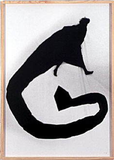 Pintura Habitada and other works, 1975 – present - A Casa, 1982. B/W photograph, 71 x 51.5 in.