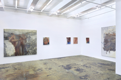 Hard Sauce – Hanneline Røgeberg - Installation view: east and south wall
