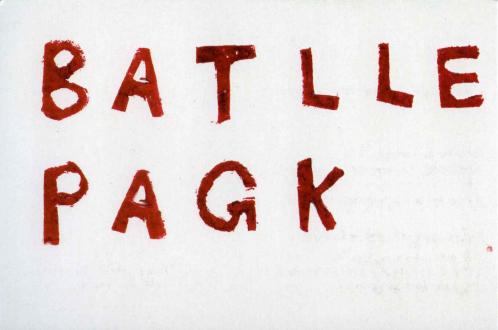Jay Batlle, Paul Pagk - Thomas Erben Gallery