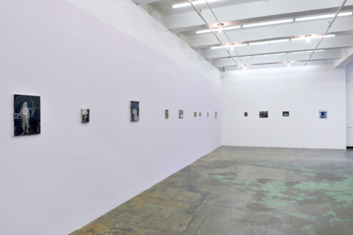 Janice Nowinski - Installation view, west and north walls.