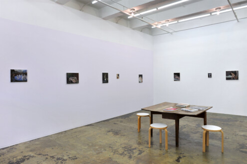 Janice Nowinski - Installation view, east and south walls.
