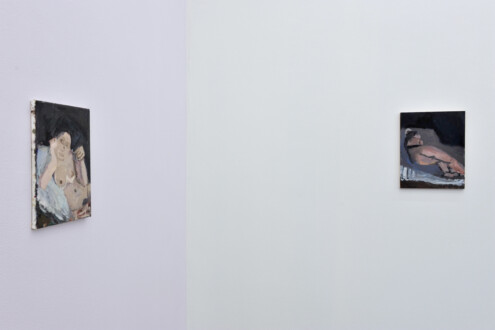 Janice Nowinski - Installation view, east and south walls (corner).