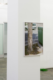 Kathrin Sonntag – Problems and Solutions - Problems and Solutions: Section 8, 2017. Photographic wallpaper mounted on wooden panel on column 25 x 37 in.