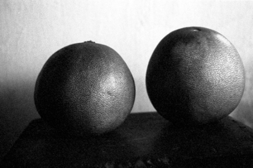 PAT – Unseen, unheard, unexplained - PAT Untitled (Fruit B/W, 2), 2007. Gelatin silver print, 7.75 x 11.5 in (image size), ed. of 7.