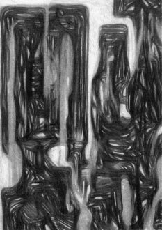 Raha Raissnia – Epitaphios - Thomas Erben Gallery