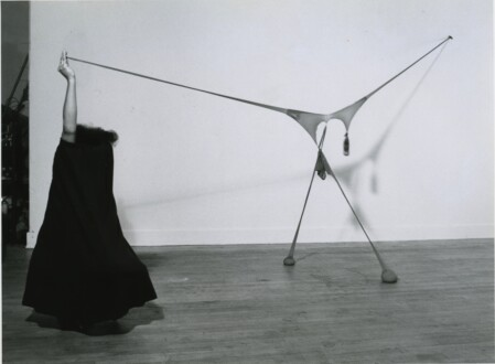 Nylon Mesh - <i>R.S.V.P. X</i>, 1977 (original piece, documentation of performance) Nylon mesh, rose petals 4 x 10 x 5 ft (dimensions of piece itself) (image used for exhibition poster, <i>Répondez S'il Vous Plaît</i> show, Just Above Midtown Gallery, March 8-26, 1977) Recreated for the 2014 White Cube exhibition. Collection of the Hirshhorn Museum and Sculpture Garden, Washington D.C.