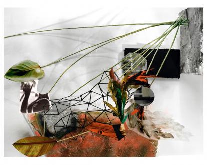 Yamini Nayar – Head Space - Circumstance, 2010. C-print, 36 x 48 in, edition of 5 (+2 AP).