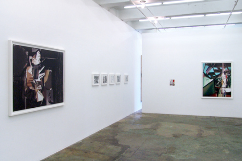 Yamini Nayar – an axe for a wing-bone - Installation view, west and north wall.